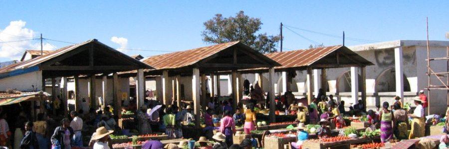 Thinking Through Madagascar