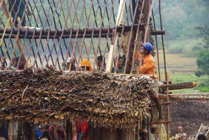 Building a trano-be, Madagascar