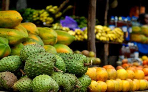 Een veldgids voor fruit op Madagaskar
