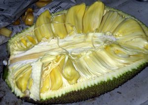 Jackfruit delicious on madagascar