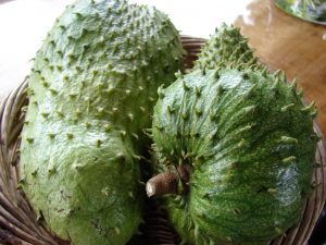 Sweet sour juice from Soursop on Madagascar